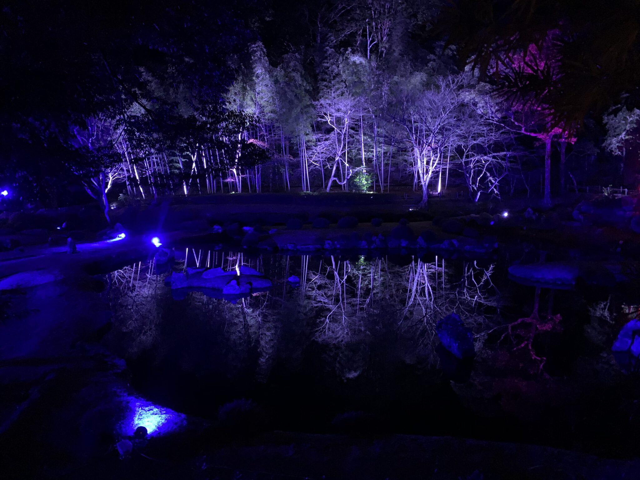 2020.12 雪舟庭冬のライトアップ
